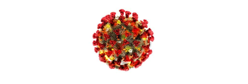 Corona Virus Info Banner